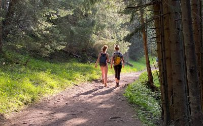 Let's Take a Walk: The Benefits of Walk and Talk Therapy